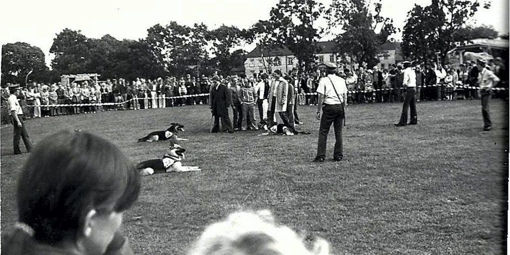 Seefest 1975 Zoll-Hunde-Vorführung