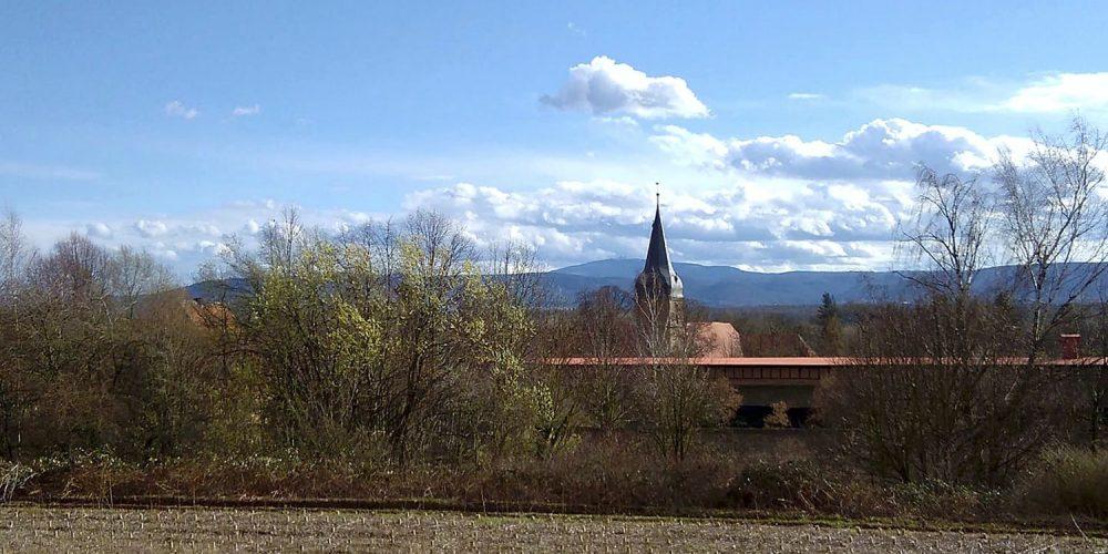 Harlywald bei Wöltingerode