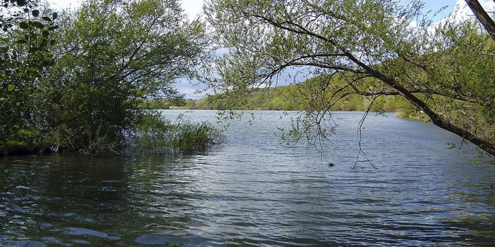 Vienenburger Wasserimpressionen