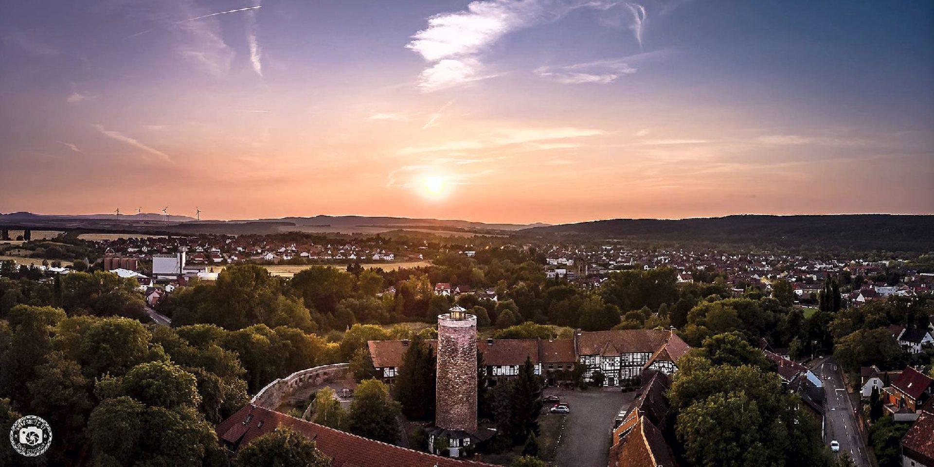 Die Vienenburg