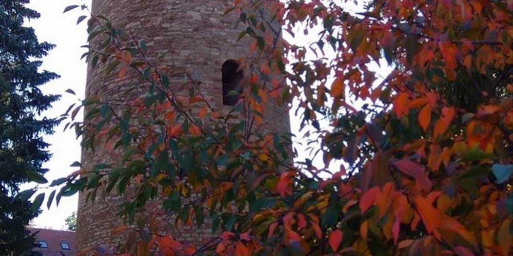 Turm der Burg Vienenburg