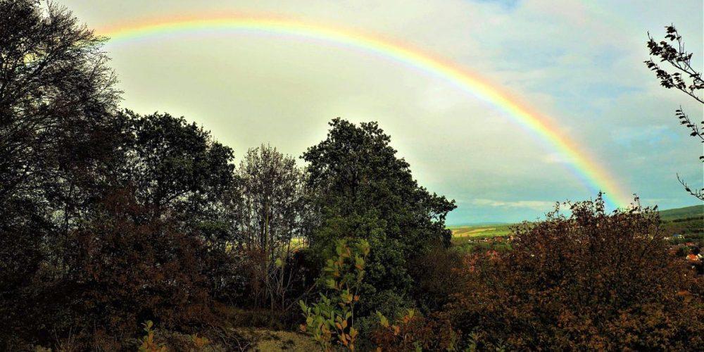 Regenbogen über Bad Harzburg