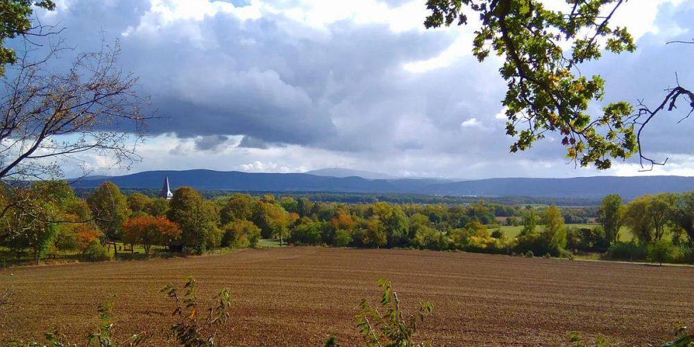 Aussicht vom Harlywald in Wöltingerode