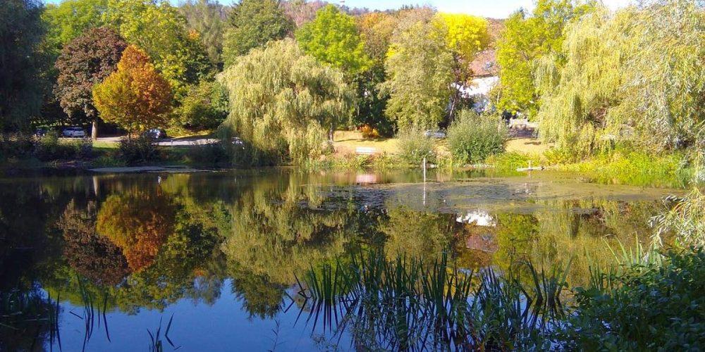 Frankenberger Teich in Goslar