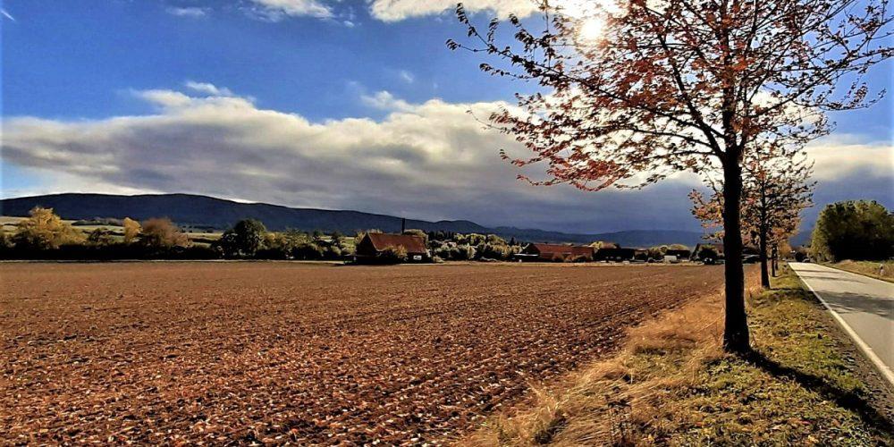 Blick auf den Bad Harzburger Ortsteil Bettingerode