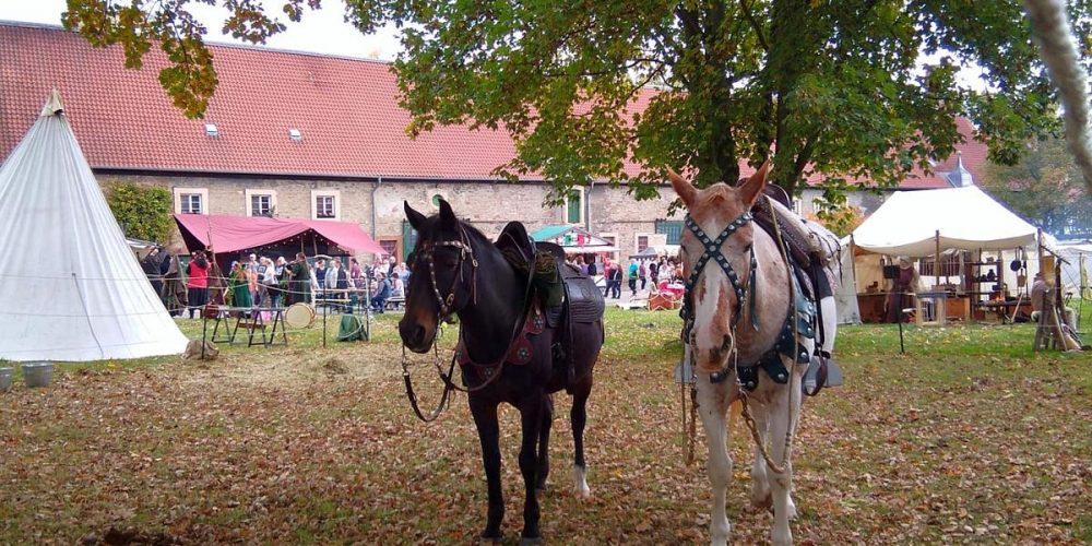Herbstlaune-Foodmarkt im Kloster Wöltingerode