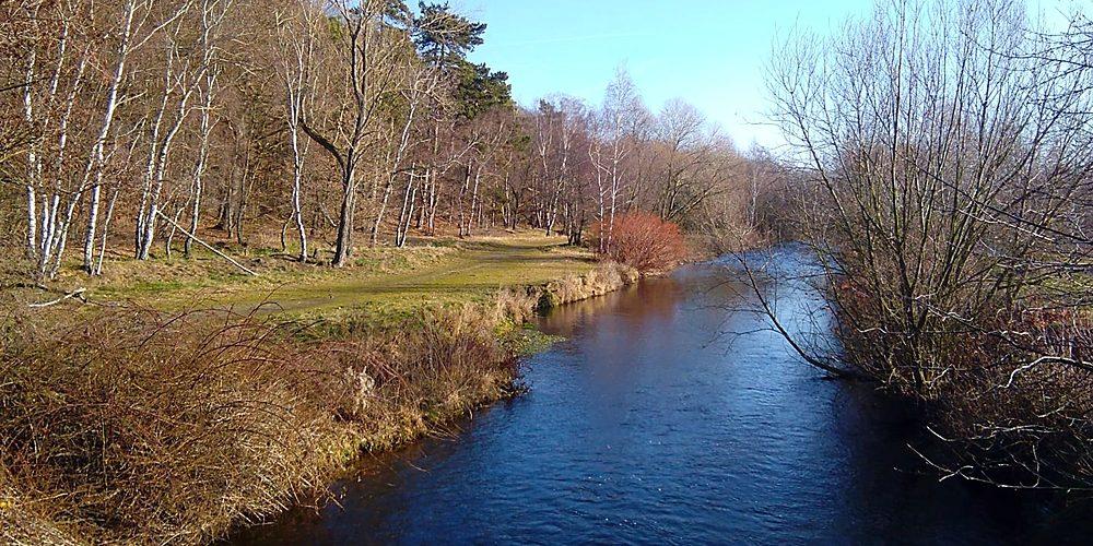Vienenburger See und Oker am Harlywald