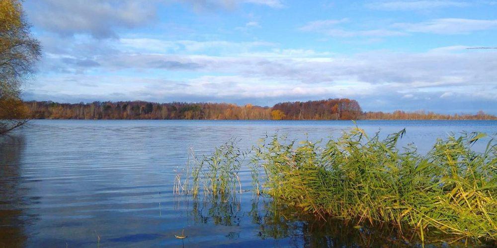 Am Wiedelaher See