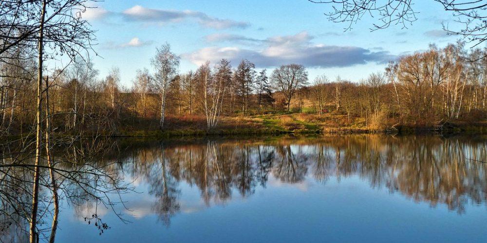 'Spiegelchen' an einem Vienenburger Teich