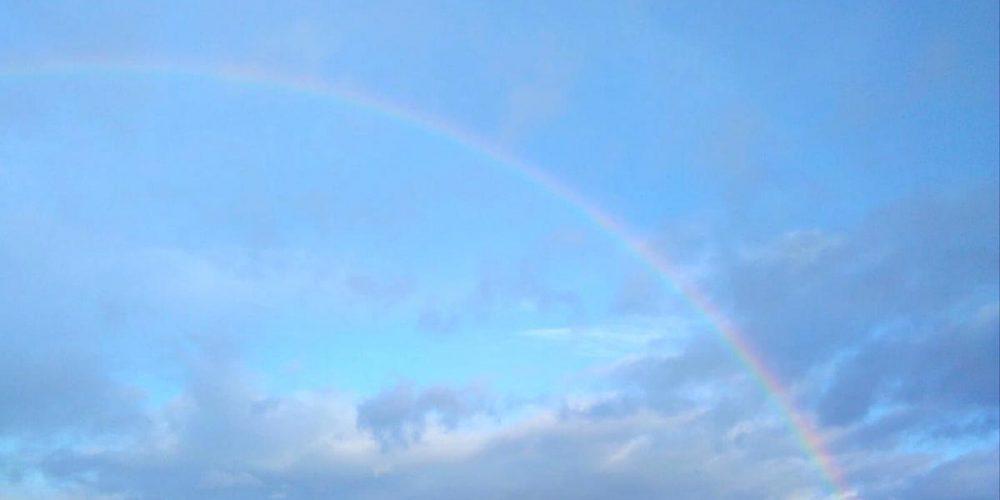 Regenbogen über Wiedelah