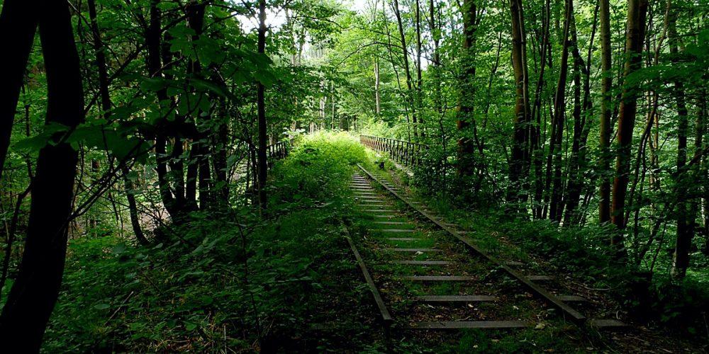 Ehemalige Bahnstrecke bei Eckertal